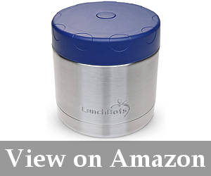 thermos for school lunch