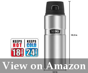 best thermos stainless steel reviews